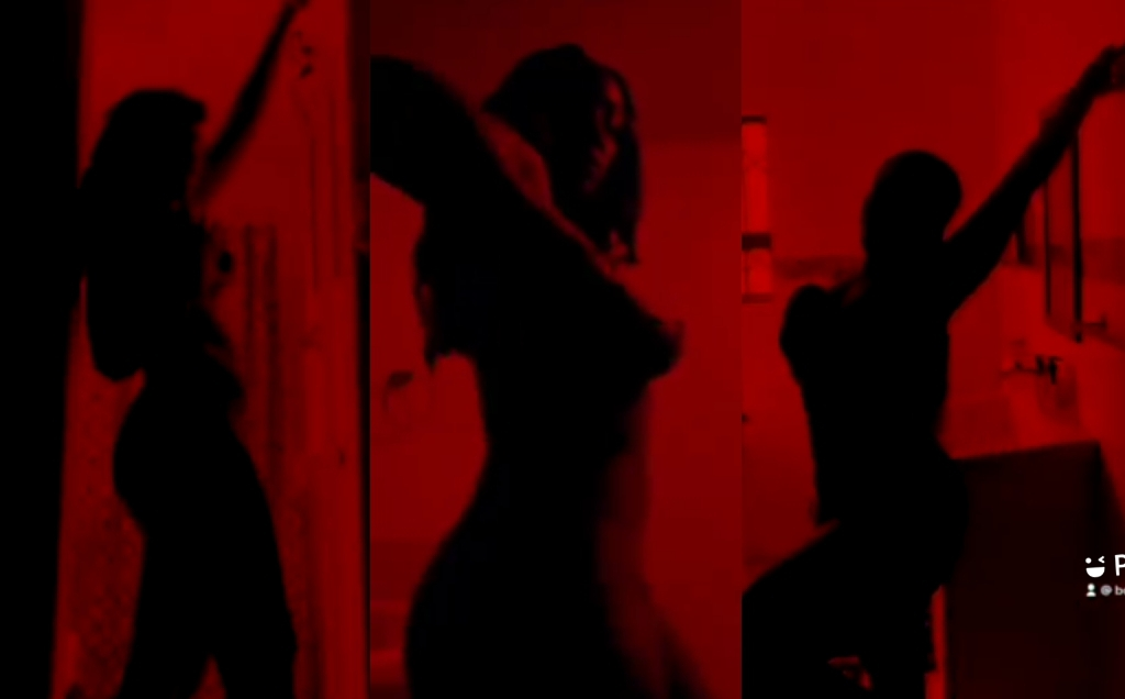 3 Most Tempting Silhouette Challenge On Twitter