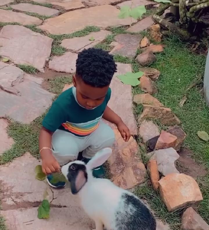 Cute Video John Dumelo's Son Feeding A Rabbit