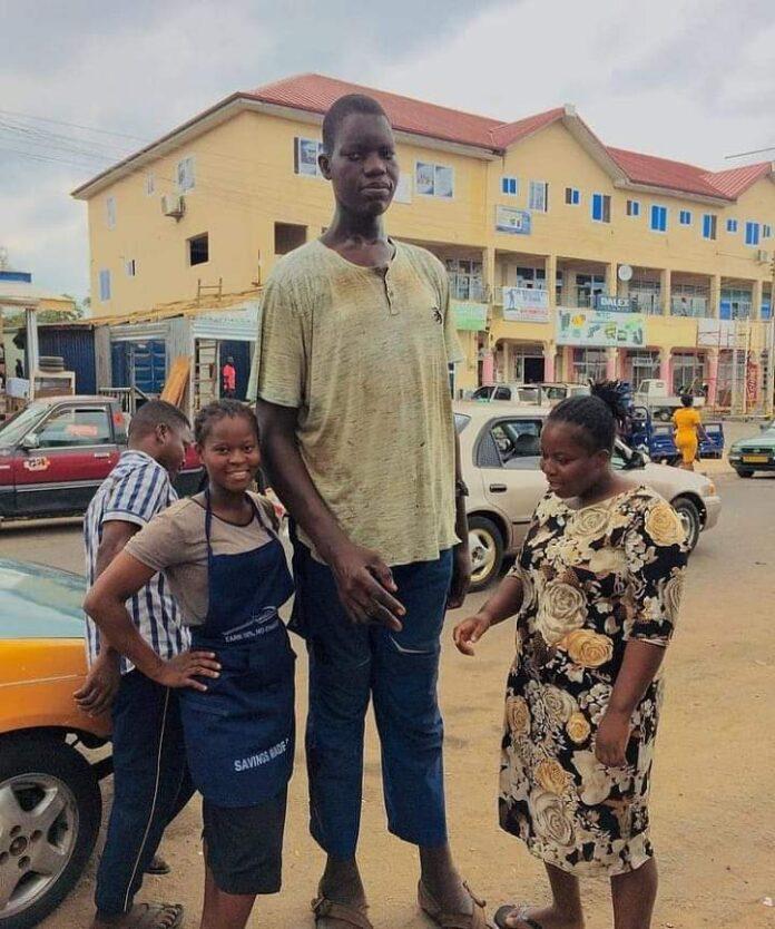 Tallest Man In Volta Charles Taller Pleads For Help